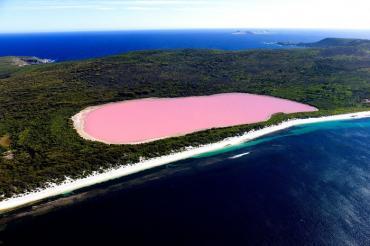 Розовое озеро Хиллер в Австралии