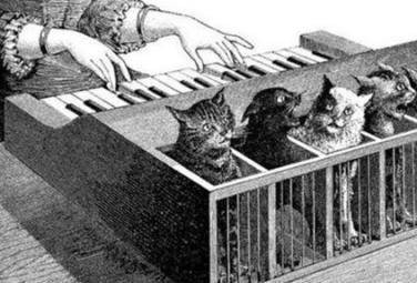 Кошачий клавесин