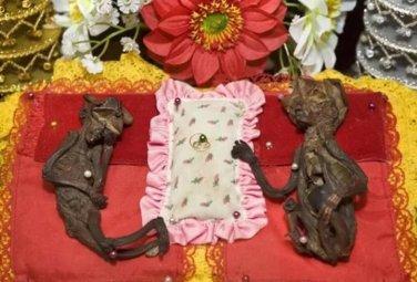 Мумифицированные феи - святыни Таиланда